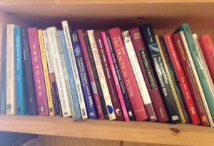 A bookshelf in the Writing Rodeo conference space