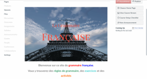 French Grammar Canvas Site