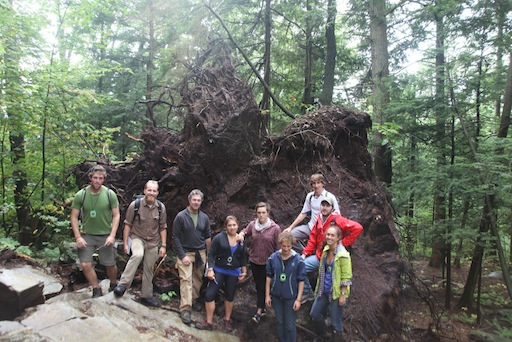 Environmental Field Methods class under a gigantic uprooted tree