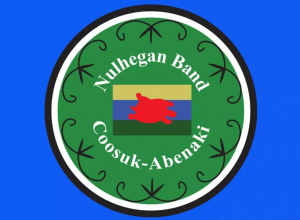 A screenshot of the Nulhegan Band Coosuk-Abenaki emblem/coat of arms