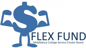 Official Flex Fund Logo
