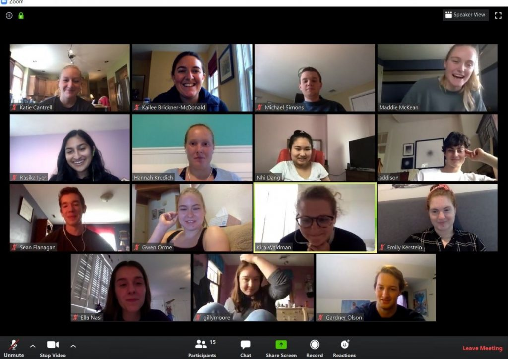 Zoom video call screen shot with 15 faces in a grid