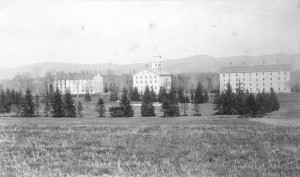 Old Stone Row and the Main Quad in 1890-the large Norway spruce is in the closer row