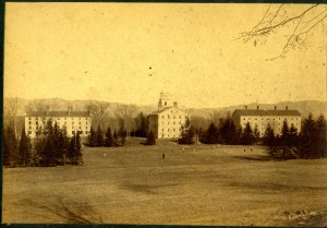 Another perspective on teh spruce row-1892