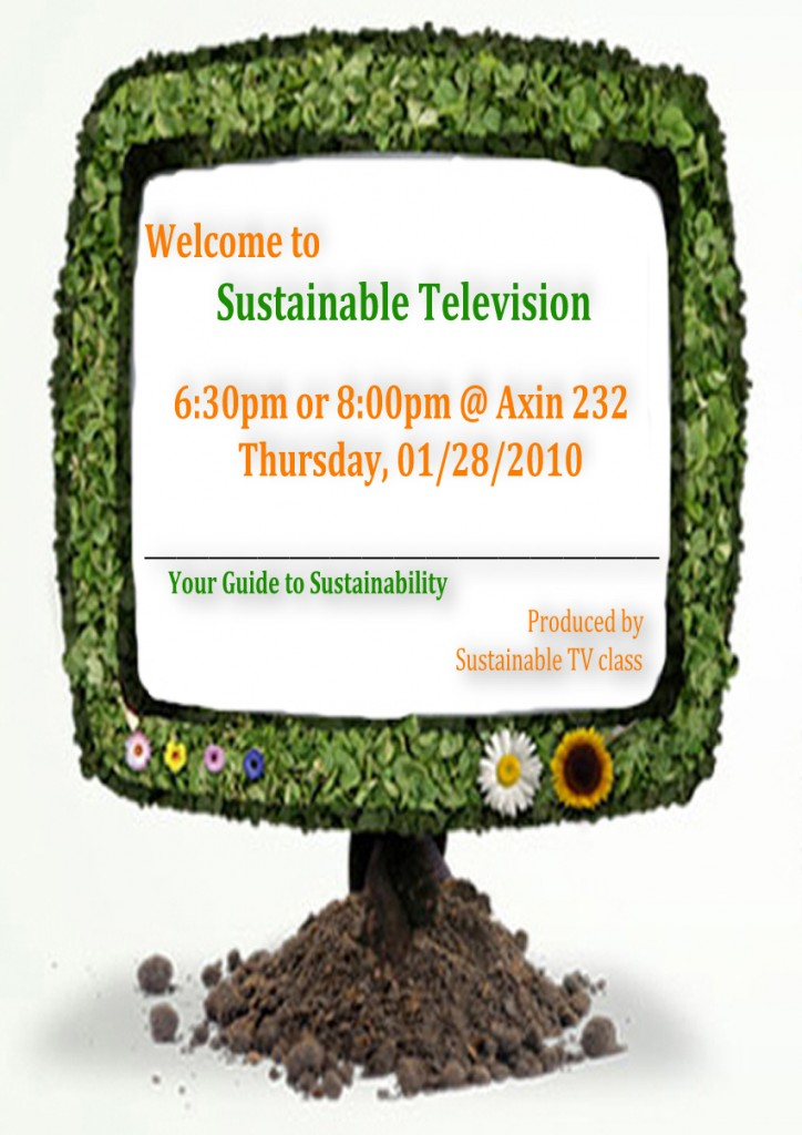 Sustainable TV Poster