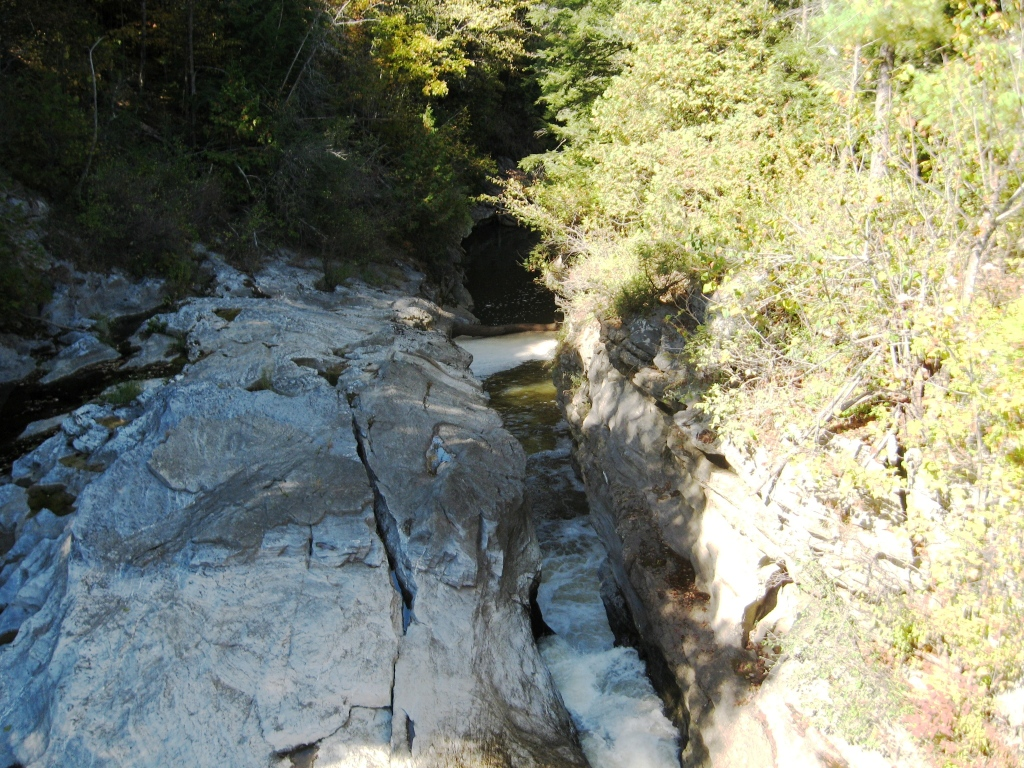 Gorge on Otter Creek