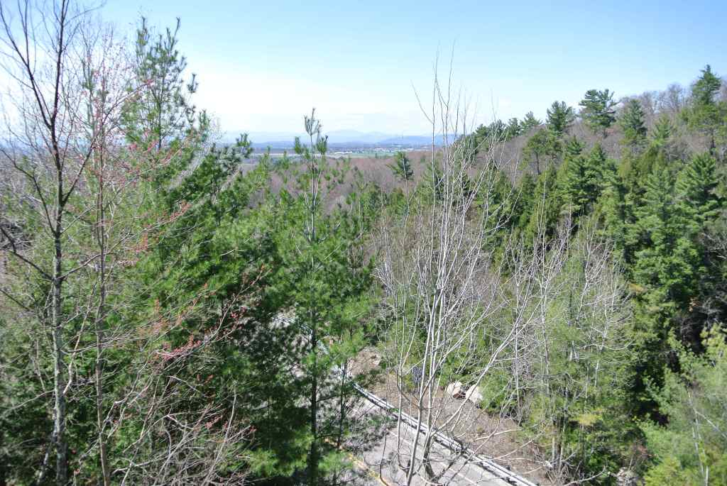 Unique adirondack view