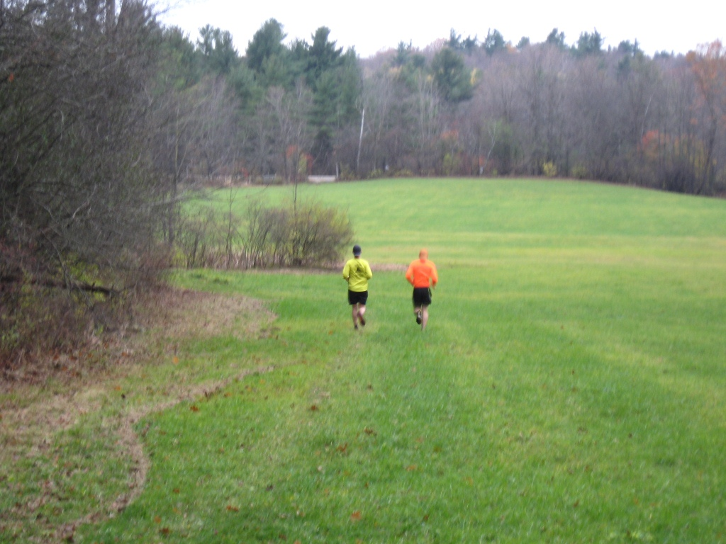 Runners in the Meadow