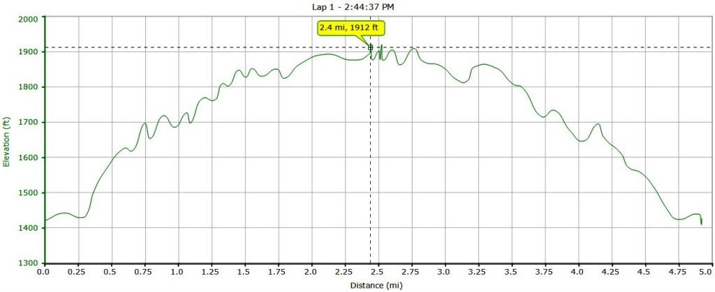 Altitude Profile New Years