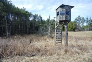 Treehouse Hunting Stand