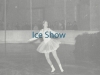 link-ice-show-pic